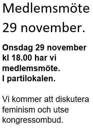 Medlemsmöte 29 november